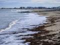Hampton Beach-10