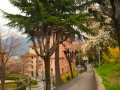 Lugano-131