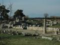 Paestum-20
