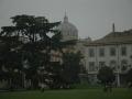 Parma-14
