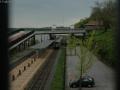 Rhinebeck-47.jpg